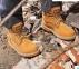 Взуття без металевого носка Canis 613 Avers 0